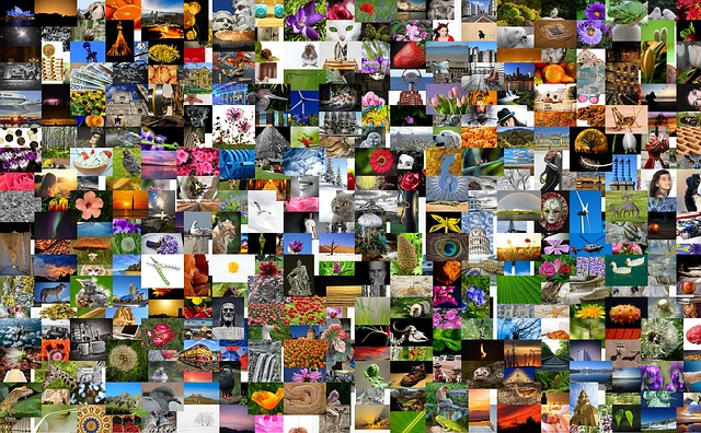 stock library images board